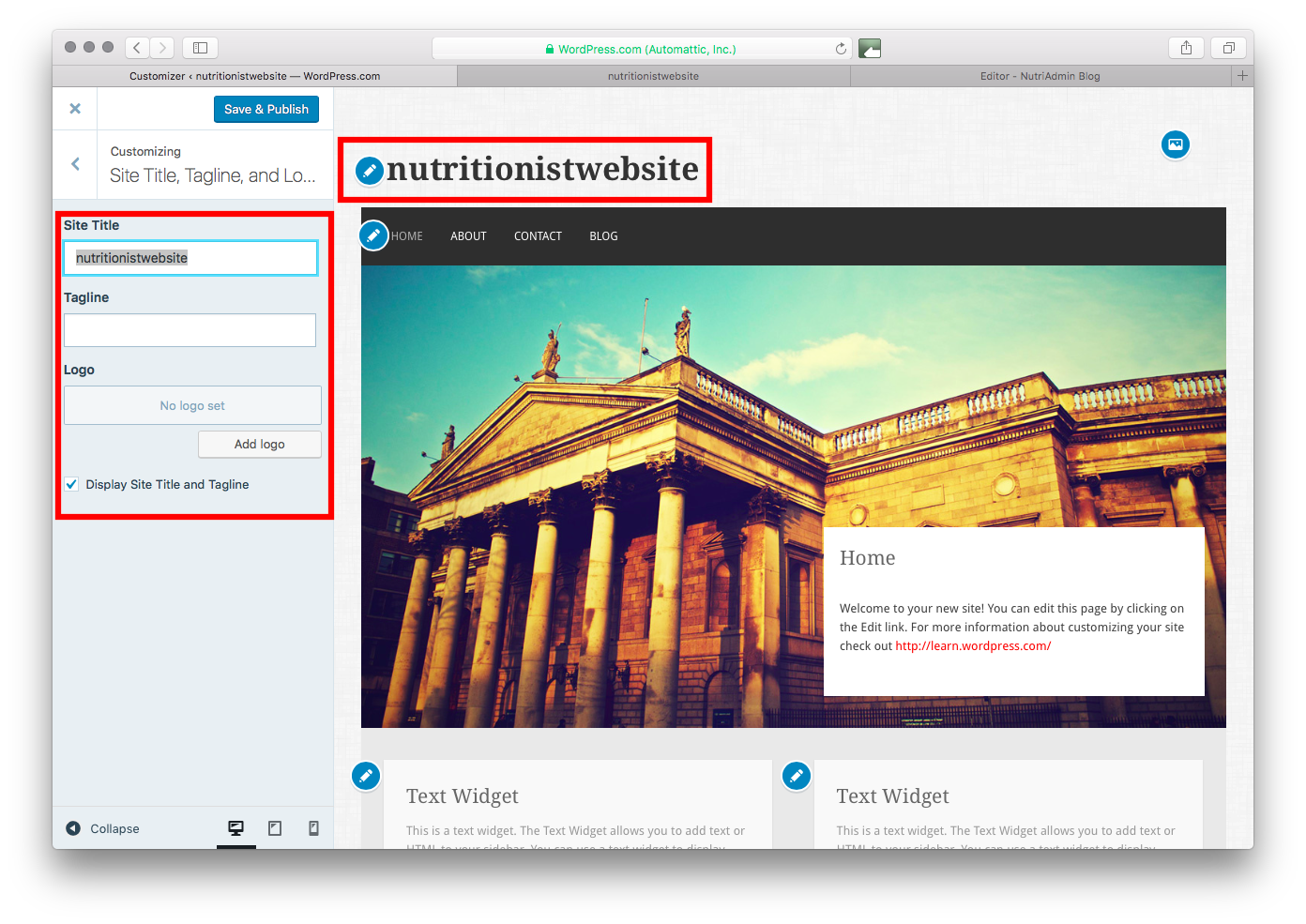 Customiser for nutritionist site in Wordpress