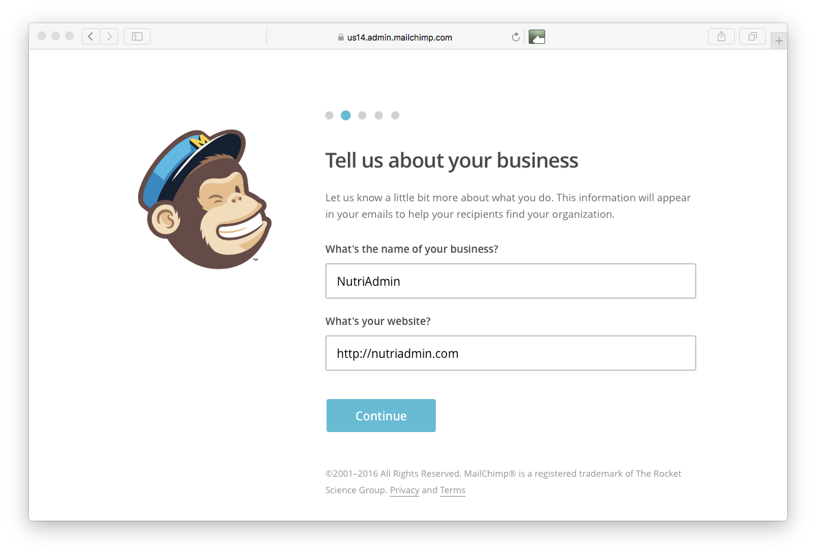 company and website in Mailchimp
